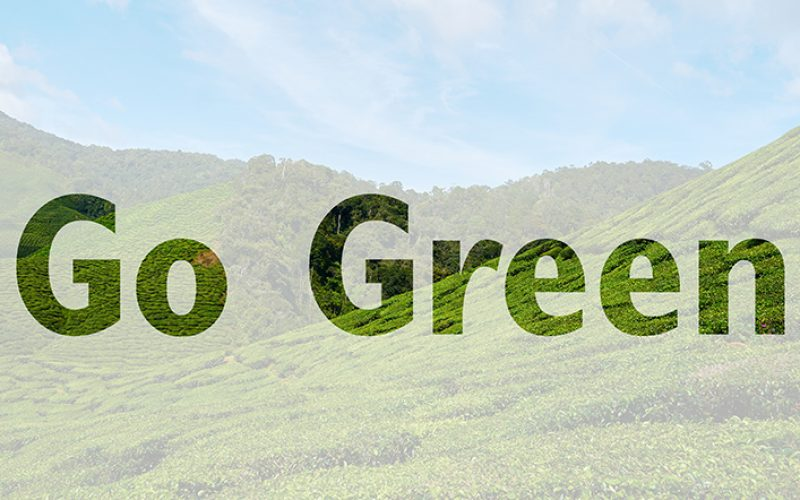 Ways to Go Green on Your Next Vacation